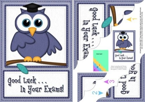 A5 Wise Owl Exam Good Luck Felties Scallop Side Stacker by Carol Clarke