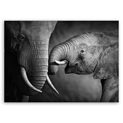 ge Bildet Bild auf Leinwand MIT Sommer Elefanten - schwarz weiß Tier Bilder - 70x50 cm einteilig - direkt vom Hersteller aus Deutschland -
