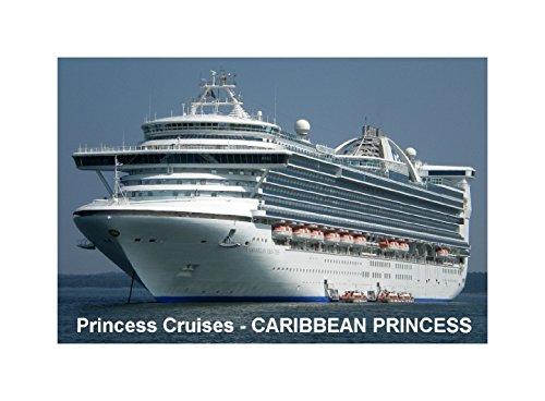 imn-para-nevera-buque-de-crucero-caribbean-princess-princess-cruises-9cm-x-6cm-jumbo