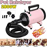 2800W Variable Speed Pet Grooming Hair Dryer High Velocity Dog Cat Hairdryer Blaster Fur Blower with 2 Gear Temperature & Flexible Hose & 3 Nozzles - Pink