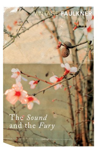 The Sound And The Fury (Vintage Classics) (English Edition)