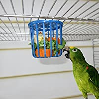 suchergebnis auf f r vogelk fig n pfe tr nken zubeh r v gel haustier. Black Bedroom Furniture Sets. Home Design Ideas