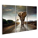 islandburner Bild Bilder auf Leinwand Elefant Mammut Poster, Leinwandbild, Wandbilder