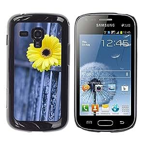 WonderWall Carta Da Parati Immagine Custodia Rigida Protezione Cover Case Per Samsung Galaxy S Duos S7562 - recinzione margherita metafora significato profondo