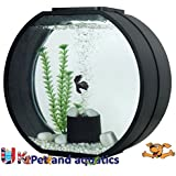 Fish R Fun Deco Fish Tank, 20 Litre, Black