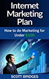 Internet Marketing: Plan: The Ultimate Guide To Internet Marketing! - Gain Financial Freedom With These Internet Marketing Tools To Make Money Online Or ... Tools, Financial Freedom) (English Edition)