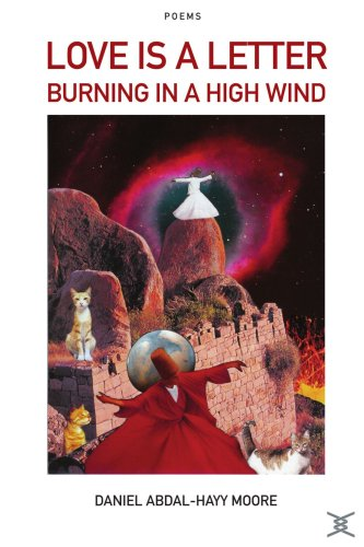 Love is a Letter Burning in a High Wind / Poems