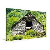 Premium Textil-Leinwand 90 cm x 60 cm quer, Ziegen im Tal | Wandbild, Bild auf Keilrahmen, Fertigbild auf echter Leinwand, Leinwanddruck (CALVENDO Orte)