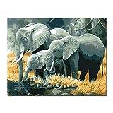 Painting-YC Malen Nach Zahlen Für Erwachsene Kinder - Elefant 16×20 Zoll Leinen Segeltuch - DIY Ölgemälde Ölfarben Weihnachten Geschenke