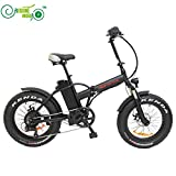 Free Shipping 48V 500W 8Fun/Bafang Hub Motor 20' Ebike Mini Folding Fat Tire Electric Bicycle with 48V 12.5AH Lithium Battery