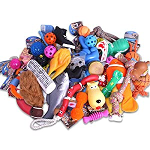 20-ASSORTED-BULK-BARGAIN-BUNDLE-TREATS-PET-PUPPY-DOG-DOGGY-CHEW-ROPE-TOYS-FUN