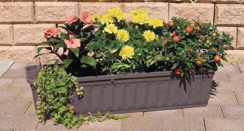 blumenkasten-80-cm-anthrazit-mit-wasserspeicher-made-in-germany