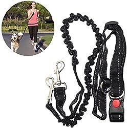 Mains libres laisse de chien laisse ceinture élastique avec sangle ventrale réglable pour faire du Jogging randonnée à pied, harnais pour chien élastique pour la course