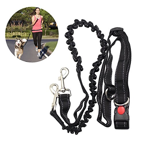 NUOLUX Hands Free Running Dog Lead, Adjustable Waist Belt Perfect for Jogging Hiking Walking, Dog Lead Leash Bungee Harness for Running