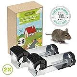 2x Mäusefalle Lebendfalle | Tierfreundlich | Kastenfalle | Robust | Nageltierfalle | Sicher für Kinder & Haustiere | W