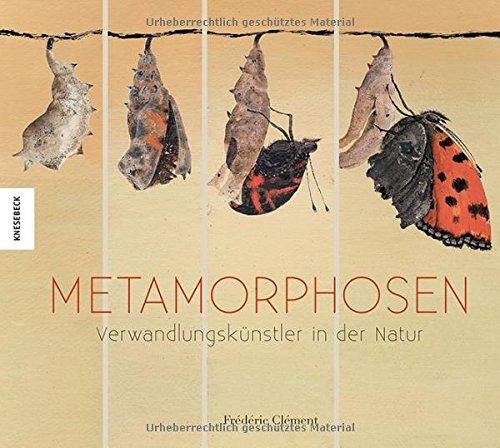Metamorphosen: Verwandlungskünstler der Natur