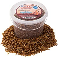 Chubby Mealworms Dried Mealworms, 3 Litres