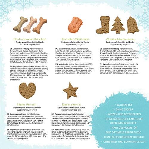 Zoom IMG-1 petp l advent calendar
