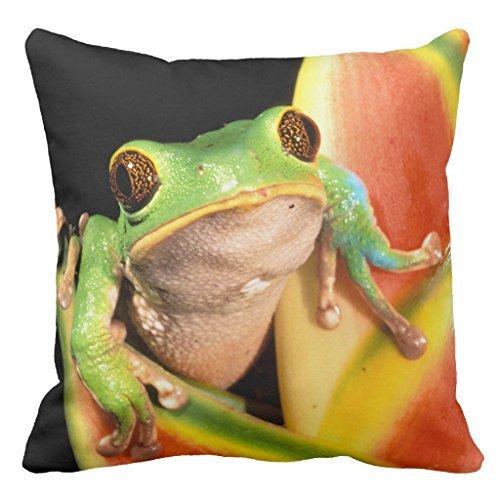 Sinluen Sudamérica, Ecuador, Amazon. Funda de cojín Decorativa para sofá con diseño...