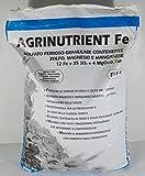 AGRINUTRIENT FERROS0 SULFAT VON 25 KG GRANULAT