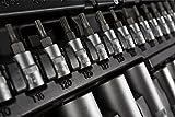 STIER Steckschlüssel-Satz 179-teilig I 1/2 1/4 & 3/8 Zoll Ratschen (Umschaltknarre) I Sechskant-Steckschlüsseleinsatz I Torx- Schlitz- Phillips- Pozidrive- Bit-Steckschlüsseleinsätze I Werkzeugkoffer mit 179 Teilen -