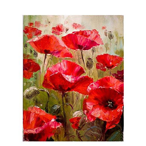 DIY Digital Malen nach Zahlen Codierung Ölgemälde gerahmt mit Box Red Flower abstrakte Kunstwerke an den Wänden Bild handgemalt Wohnzimmer Artwork 16×20 Zoll Geburtstag Hochzeit Weihnachten Danksagung Geschenk für Kinder und Erwachsene