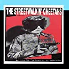 Waiting for the Death of my Generation by The Streetwalkin' Cheetahs
