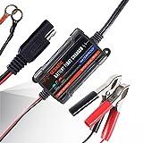MICTUNING 6V-12V 750mA Chargeur de Batterie Plomb-Acide Mainteneur de Charge Batterie Auto Universel