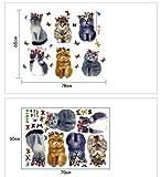 JUNMAONO 3D Katze Wandaufkleber/Wandgemälde/Wand Poster/Wandbild Aufkleber/Wandbilder/Wandtattoo/Pinupbild/Beschriftung/Pad einfügen/Tapete/Tapezieren/Tapeten/Wand Zeitung/Wandmalerei/Haftnotiz/Fühlen Sie sich frei zu kleben/Instant Aufkleber/3D-Stereo-Wandaufkleber