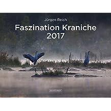 Faszination Kraniche: 2017 / Kalender