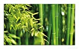 Wallario Herdabdeckplatte / Spritzschutz aus Glas, 1-teilig, 90x52cm, für Ceran- und Induktionsherde, Bambuswald mit grünen Bambuspflanzen