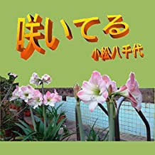 saiteru (Japanese Edition)