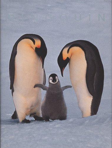 FO-25 LANTING PINGOUIN par Frans Lanting