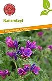 De Bolster 15380 Natternkopf (Bio-Natternkopfsamen)
