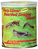 Lucky Reptile Herp Diner Bearded Dragon Blend 70 g, 1er Pack (1 x 70 g)