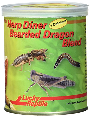Lucky Reptile Herp Diner Bearded Dragon 70 g