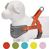 Blueberry Pet Hundegeschirr mit reflektierenden Nylonstreifen von 3M, einfarbig, mit Neoprenpolsterung, verstellbares Hundegeschirr, verhindert Zerren, zum Trainieren