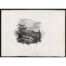 Diseño antiguo ThePrintsCollector print-bow-arrow-quiver-trellis-rose bush-moon-1780