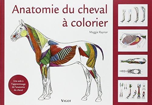 Anatomie du cheval à colorier : Une aide à l'apprentissage de l'anatomie du cheval par Maggie Raynor