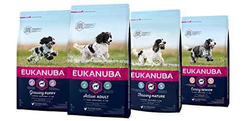 Eukanuba Dog Adult Medium Breed 10