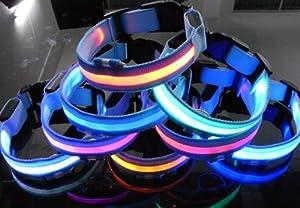 Namsan Collier de chien LED clignotant Dog Blue Collar avec 8 couleurs Lumières