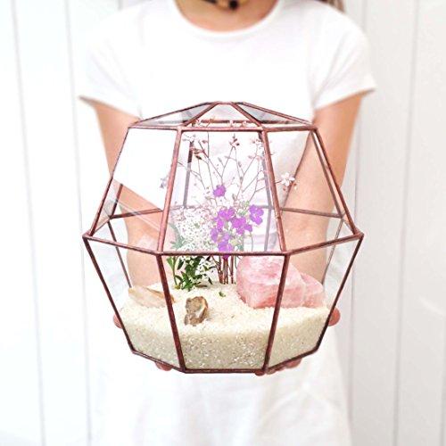 octagon-geometric-glass-terrarium-23-modern-planter-indoor-gardening-handmade