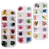 nuoshen 36 Colors Nail Dried Flowers, Natural Dried Flowers for Nail Art 3D Nail Art Accessories Kits for Nail Decor