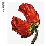 Release: Further Listening 2001 - 2004 (3 CDs Box-Set)