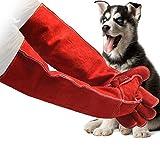 Rziioo Tierhandschuhe Anti-Biss- / Kratzhandschuhe, für Hundekatze Vogel Schlange Papagei Eidechse Wilde Tiere Schutzhandschuhe