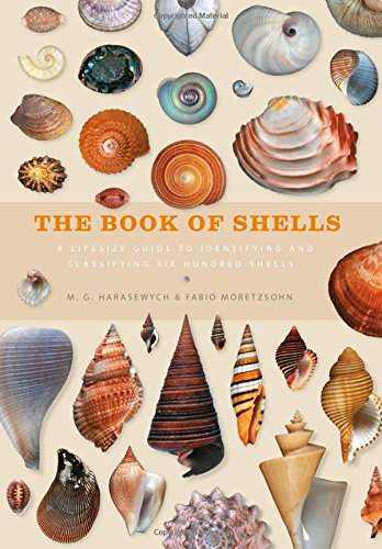 the-book-of-shells