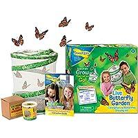 Insect Lore de Buki - Jeux Educatifs - Kit Insectes Vivants Chenilles - Version UK