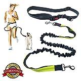 Nikou Hands Free Dog Leash Reflective Verstellbarer Hüftgurt für Laufen Walking Wandern Schwarz Grün