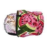 AOLVO Mini Pet Tasche für Frettchen/Zwerg/Bunny/Kaninchen/Meerschweinchen Igel/Kätzchen, PET Carrier Tasche mit umlaufender Reißverschluss–ungiftig, atmungsaktiv–Cute Transportbox für kleine Rassen Haustiere