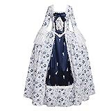 Cosplayitem Robe Rococo Fleurs Bleues Robe de Renaissance Victorienne Médiévale Robe de fantaisie Elégante